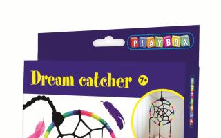 Traeumfaenger-Playbox.png