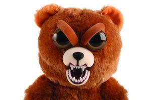 bearmad.jpg