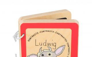 Babybuch-Ludwig.jpg