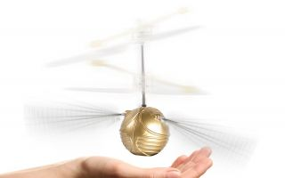 Goldener-Schnatz-Fliegender.jpg