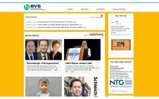 bvswebsite.jpg