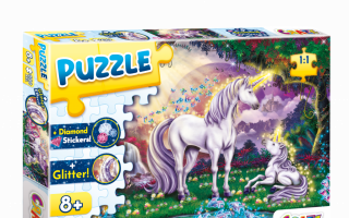 CrazePuzzleThe-Magic-Pool.png