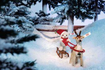 Steiff-Weihnachtsbild.jpg