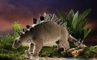 f7010d3a6415stegosaurusklein.jpg
