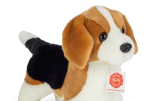 Teddy-Hermann-Beagle.png
