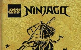 Ameet-Lego-Ninjago-Buch.jpeg