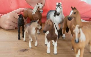 horseclubgirlwithhorses3rschleich-1489477723.jpg