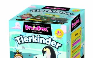 BrainboxTierkinder.jpg