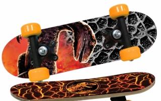 Mini-Skateboards-Joy-Toy.jpg