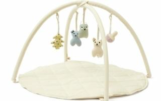 Kids-Concept-Baby-Gym.jpg