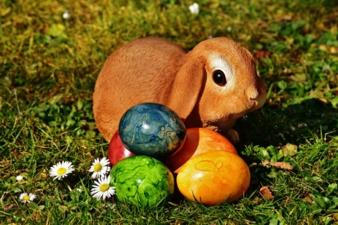 Osterhase-und-bunte-Eier.jpg