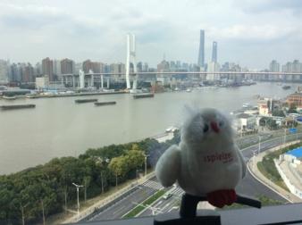 Wispi Shanghai