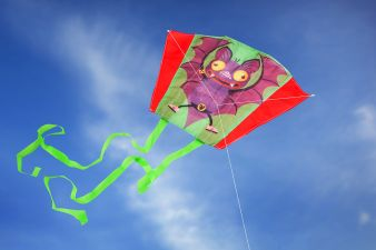 Donkey Products Mini Kite