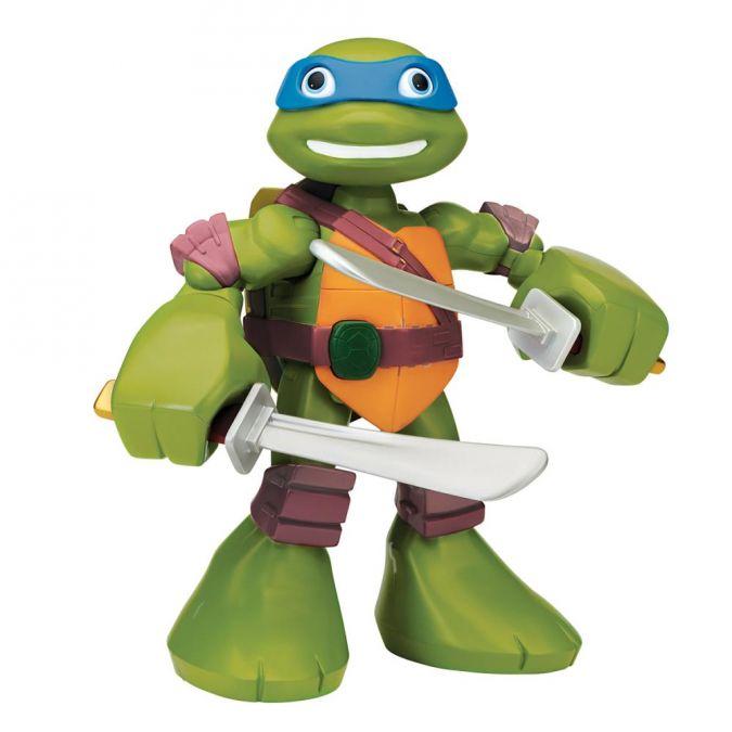 Stadlbauer_Turtles_1