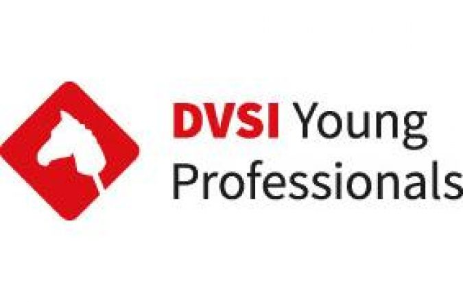 Logo DVSI Young Professionals