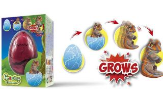 Hatching--Growing-Animals.jpg